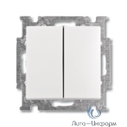 ABB 1012-0-2141 Выключатель с клавишей, 2-клавишный выключатель, альпийский белый