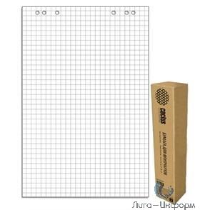 Cactus CS-PFC20S-5 Блок бумаги для флипчартов, клетка 20лист. (упак.:5шт)