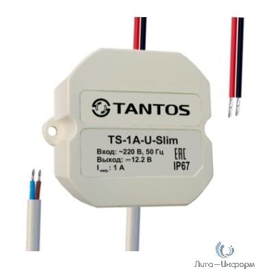 Tantos TS-1A-U-Slim Источник питания стабилизированный 12В