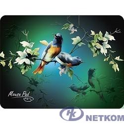 Dialog PM-H17 bird Коврик черный с цветными птицами, размер 285x215x3 мм