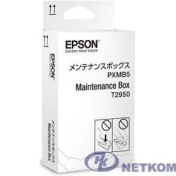 EPSON C13T295000 Maintenance Box для WF-100W (cons ink)